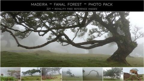 Photopack - Madeira - Fanal Forest