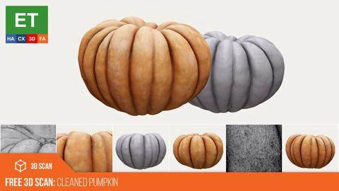 FREE Cleaned Pumpkin 3D Scan