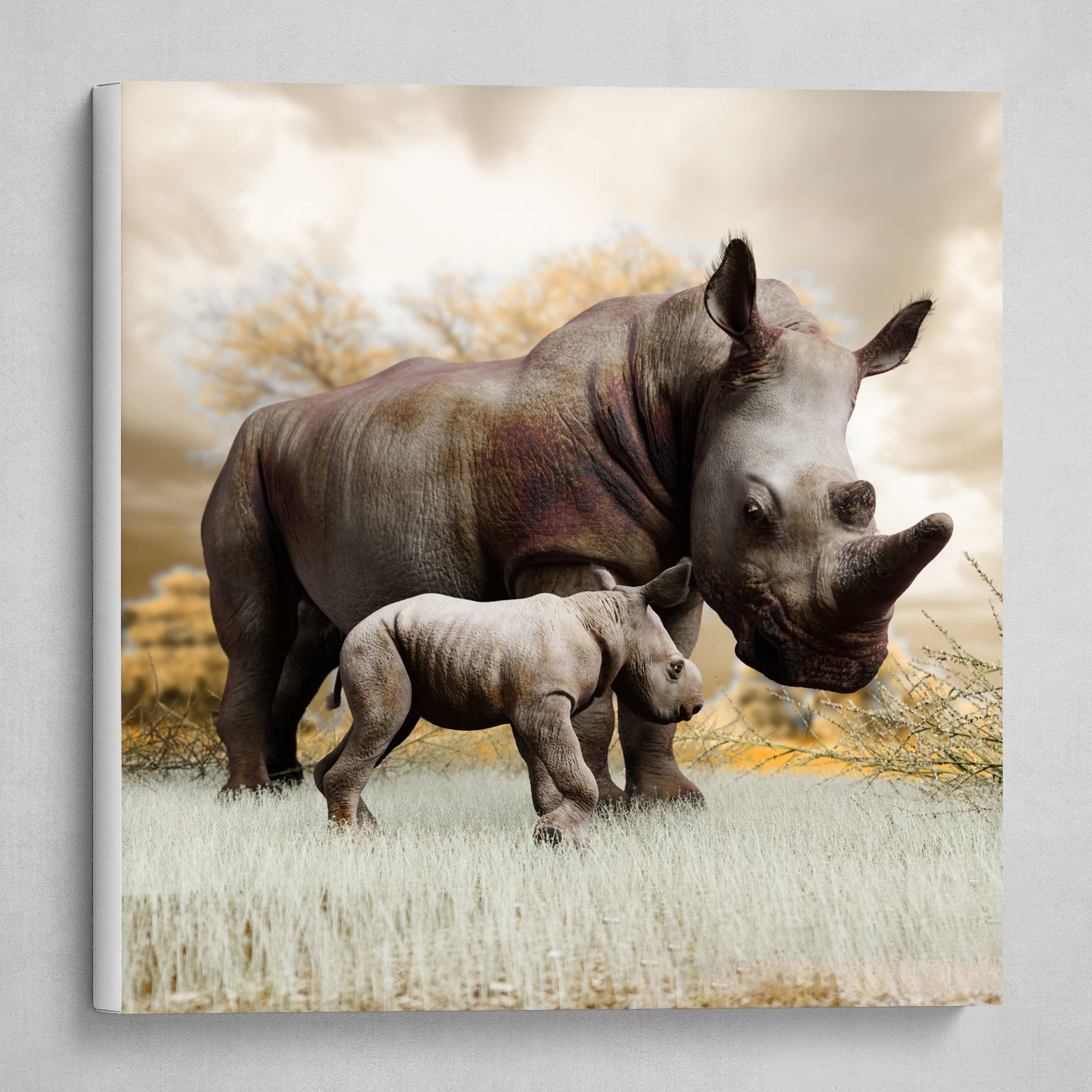 Mother and child. White Rhinoceros. 3