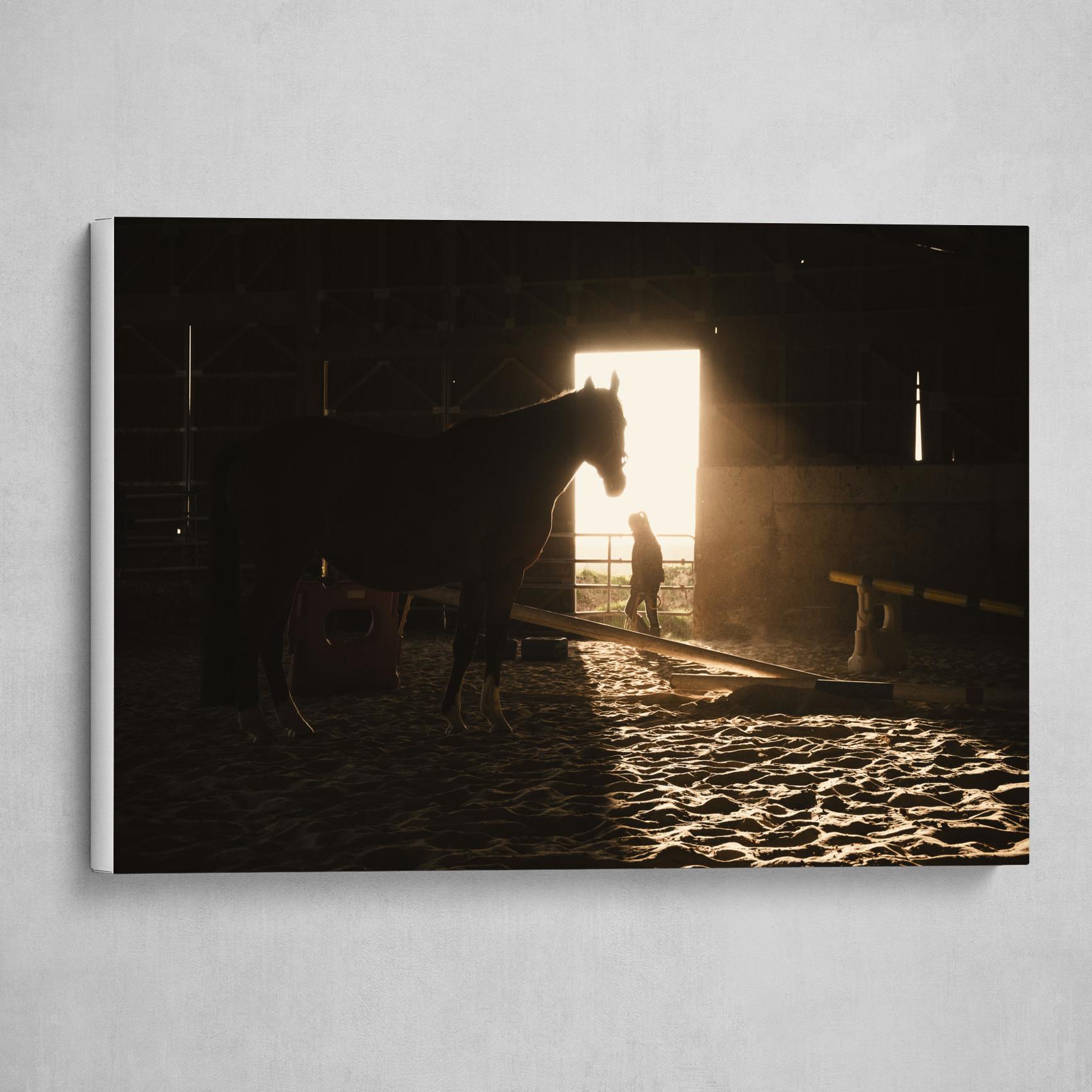 Lonesome cowgirl II