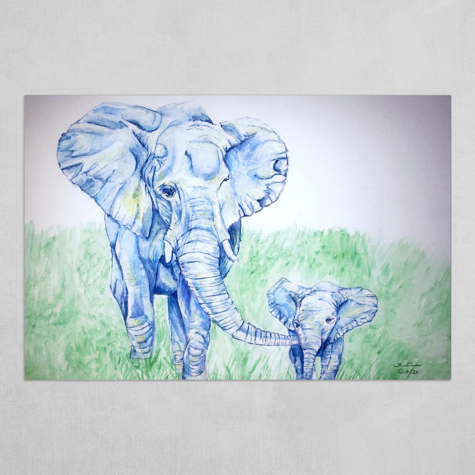 Gentle Elephants