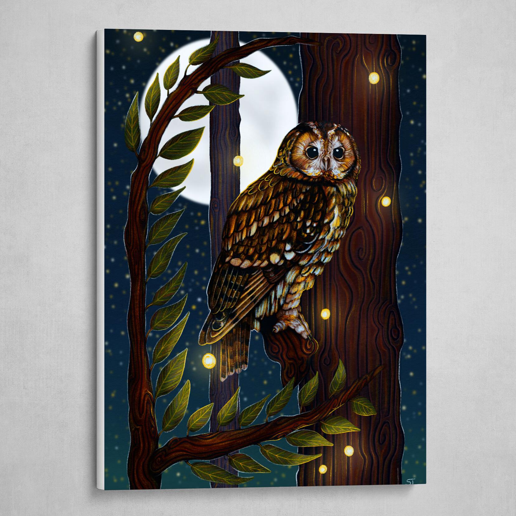 Tawny Owl Moonlit Perch