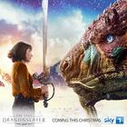 Last dragon salyer poster