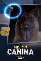 660x440 mision canina