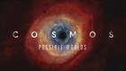 Cosmos03