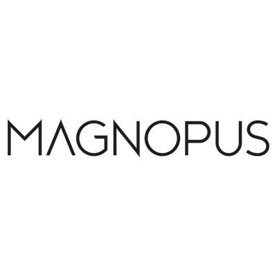 Jobs at Magnopus