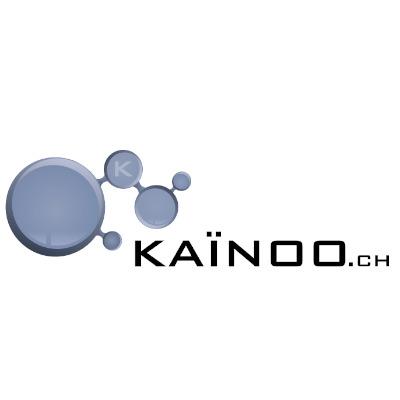 Kainoo   logo carre white