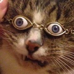 Artstation Chungus Cat